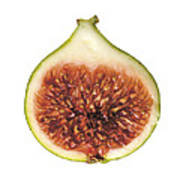 Fig Cut Open Isolated Art Print