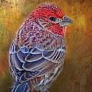 Finch With Gold Texture Art Print