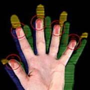 Fingerprint Biometrics Art Print