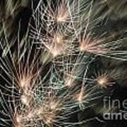 Fireworks On Bastille Day Art Print