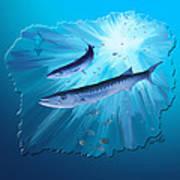 Fishing For Barracuda Art Print