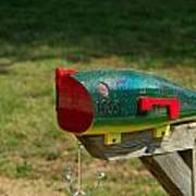 Fishing Lure Mailbox 1 Art Print