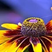 Flakes Of Pollen Art Print