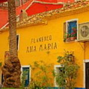 Flamenco Ana Maria Art Print