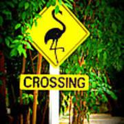Flamingo Crossing Art Print
