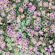 Fleurs De Nuit Art Print