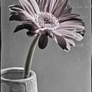 Fleurs Art Print
