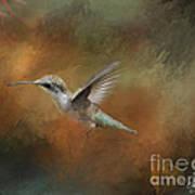Flight Of The Angel  Art Print by Cris Hayes