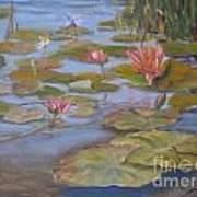 Floating Lillies Art Print by Mohamed Hirji