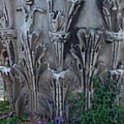 Flora Among The Ruins Art Print