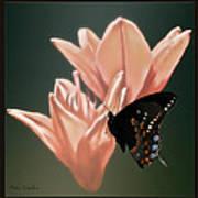 Floral Butterfly Dance Art Print