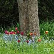 Floral Surrounding Art Print