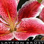 Floral Textures I Art Print