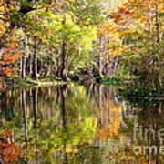 Florida Autumn Secret Art Print