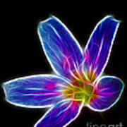 Flower - Electric Blue - Abstract Art Print