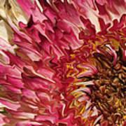 Flower Art Art Print