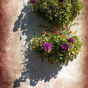 Flower Baskets Art Print