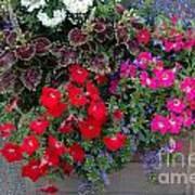 Flower Box Art Print