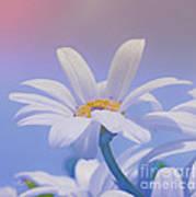 Flower For You Art Print