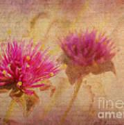 Flower Memories Art Print