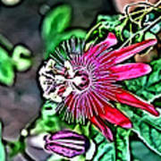 Flower Painting 0001 Art Print by Metro DC Photography