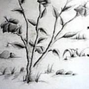 Flower Plant Art Print by Tanmay Singh