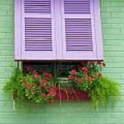 Flower Pot Window Art Print
