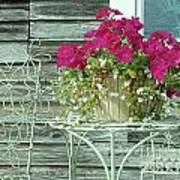 Flower Pots ...... 4 Art Print
