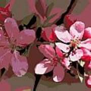 Flowering Crabapple Posterized Art Print