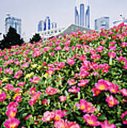 Flowers And Architecture Around Peoples Square Art Print