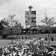 Flowers At Citi Field In Black And White Art Print by Rob Hans
