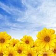 Flowers Over Sky Art Print