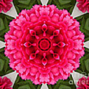 Flowery Creation Art Print