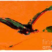 Flying Zone Art Print