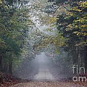 Fog Road Art Print