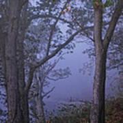 Foggy Fall Morning Art Print