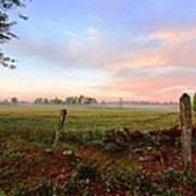 Foggy Morning Field Art Print