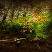 Forbidden Woods Art Print