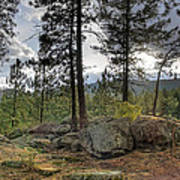 Forest Boulder Formation Near Red Lake Washington Art Print