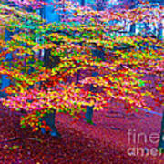 Forest Color Leaves Art Print