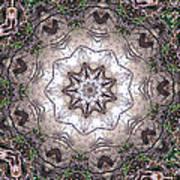 Forest Mandala 4 Art Print