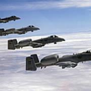 Four A-10 Thunderbolt IIs Fly Art Print