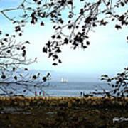 Framed On Penobscot Bay Art Print