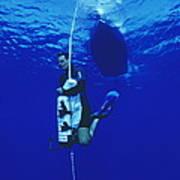 Free-diving Training Art Print