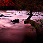 French Broad River In Fall Art Print