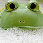 Frog In The Bath  Art Print