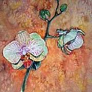 Frog On Orhids Art Print by Diana Shively