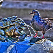 Frogs And A Pigeon Art Print