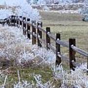Frosted Fence Art Print