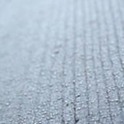 Frosted Woodgrain Art Print